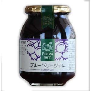 ジャム ブルーベリー 440g ビッグサイズ 福田農場 熊本|fukuda-farm