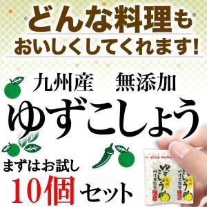 お試し 柚子胡椒 小分け袋 送料無料 九州産 無添加 ゆず 薬味|fukuda-farm