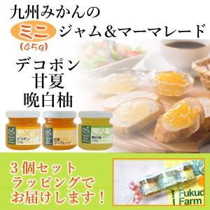 お試し ポイント消化 デコポン ジャム 甘夏 マーマレード 晩白柚 バンペイユ ジャム45g入×3個 ミニ3個セット|fukuda-farm