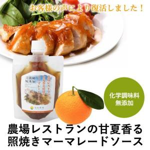 熊本発 簡単 料理たれ 甘夏 マーマレード 照り焼きソース 調味料 150g袋|fukuda-farm