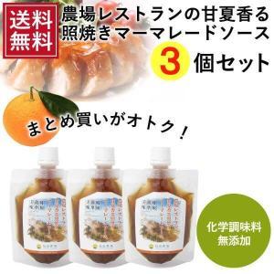 熊本発 簡単料理たれ 甘夏マーマレード照り焼き調味料150g 3袋セット 送料無料 |fukuda-farm