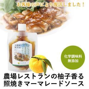 熊本発 簡単 料理たれ ゆず マーマレード 照り焼き 調味料 150g袋|fukuda-farm