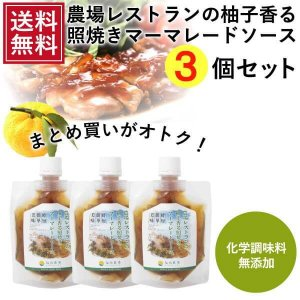 熊本発 簡単料理たれ ゆずマーマレード 照り焼き 調味料 150g 3袋 送料無料|fukuda-farm