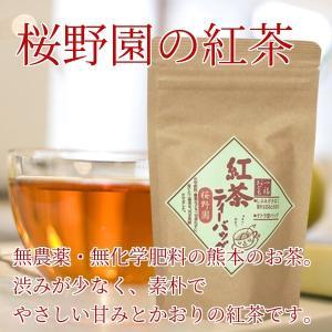 紅茶 ティバック 無農薬 化学肥料不使用 熊本産 2.5g20パック 水俣 桜野園|fukuda-farm