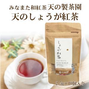 みなまた和紅茶 天のしょうが紅茶TB ティーバッグ 2.5g 10個 天の製茶園 国産紅茶|fukuda-farm