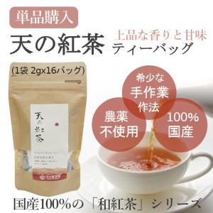 みなまた和紅茶 天の紅茶TB ティーバッグ 2g 16個 天の製茶園 国産紅茶|fukuda-farm