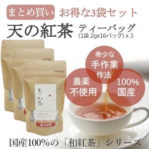 みなまた和紅茶 天の紅茶TB ティーバッグ 2g 16個×(3袋セット) 天の製茶園|fukuda-farm