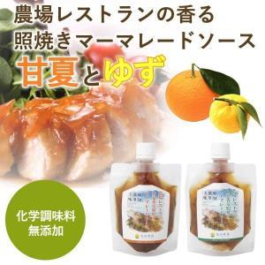 熊本 簡単料理たれ 甘夏ゆず マーマレード 照り焼き 調味料 150g 2袋セット|fukuda-farm
