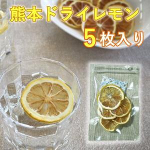 ドライフルーツ レモン 熊本 津奈木 スライスレモン 5枚|fukuda-farm