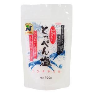 塩 海水 天日干し 100g 長崎 上五島 ネット式流下塩田方|fukuda-farm