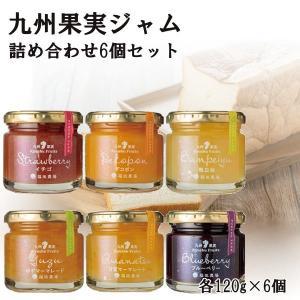 ギフト 九州果実ジャム 全種詰め合わせ 6個セット 120g レギュラーサイズ 熊本|fukuda-farm