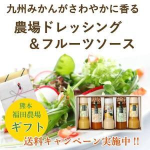 ドレッシング フルーツソース セット 甘夏 シーザー ゆず ブルーベリー デコポン|fukuda-farm