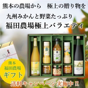 お歳暮 ギフト 熊本 ジュース ジャム ドレッシング 送料無料 特撰 バラエティ セット|fukuda-farm
