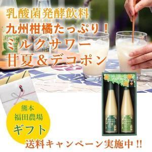 ギフト みかん ジュース 乳酸菌飲料 ミルクサワー フルーツ 甘夏 デコポン 500ml セット 5倍希釈 九州 熊本の商品画像|ナビ