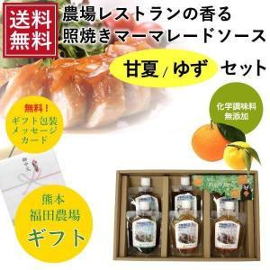 送料無料 ギフト 調味料 ソース 照焼き 甘夏ゆずセット|fukuda-farm