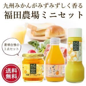お試し ポイント消化 デコポン 甘夏 ジュース ジャム ドレッシング 送料無料 fukuda-farm