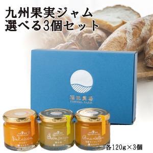 お歳暮 ギフト ジャム 甘夏 マーマレード デコポン 送料無料 和紅茶 おまけ付き 晩白柚 柚子 イチゴ ブルーベリー 選べる 3個|fukuda-farm