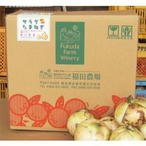 新玉ねぎ 熊本 サラダタマネギ サイズ混合 10kg 30玉前後|fukuda-farm