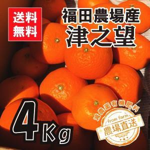 津之望みかん 約4kg 秀品 送料無料(東北北海道除く)熊本福田農場18玉から20玉前後Lから2Lサイズ|fukuda-farm