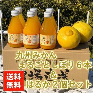 はるか みかん ジュース 100% 送料無料(東北北海道除く) 熊本 福田農場 ストレートジュース 6本 はるか 2個 セット|fukuda-farm