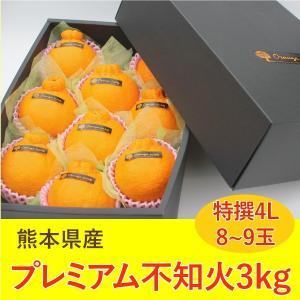 不知火 みかん 熊本産 プレミアム 3kg 特撰 4L 8から9玉 ギフト 贈答|fukuda-farm