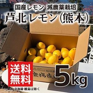 レモン 5kg 熊本県芦北産 防腐剤 防かび剤不使用 ご家庭用 少しわけあり 有機肥料栽培|fukuda-farm