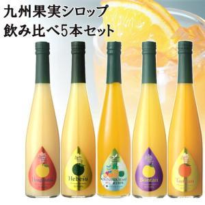 訳あり ノンアルコール ノンアルドリンク 九州果実シロップ ネット限定5本セット 炭酸水付き ギフト不可|fukuda-farm