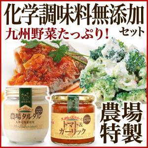 福田農場の化学調味料無添加 九州野菜たっぷりソースセット 農場タルタルとトマト&ガーリック|fukuda-farm
