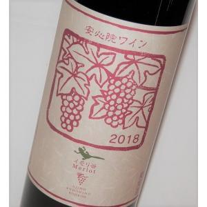 安心院ワイン メルロー・イモリ谷 赤 720ml 三和酒類・安心院葡萄酒工房 果実酒 fukudasaketen
