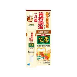 小林製薬  生葉口内塗薬 20g(第3類医薬品)|fukuei
