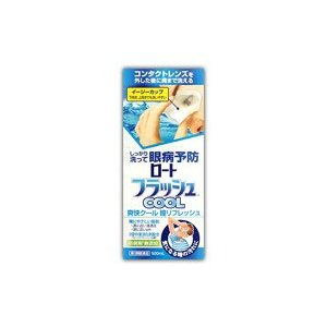 ロートフラッシュクール 500ml (第3類医薬品)|fukuei