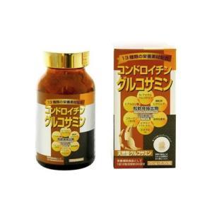 リケン コンドロイチン グルコサミン 約240粒|fukuei