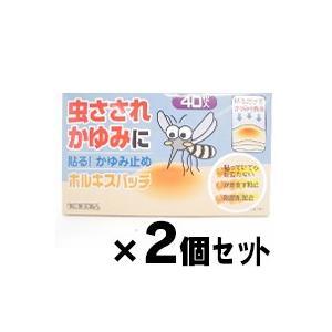 (メール便送料無料)ホルキスパッチ 40枚×2個セット (第2類医薬品)