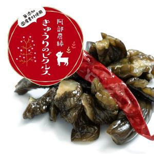きゅうりのピクルス 150g×5個セット 国産 きゅうり 農家のお母さん達の手作りピクルス 酢漬 阿部農縁|fukufukugenki|02
