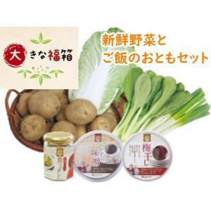 大きな福箱 新鮮野菜5種類 と ご飯のお供のセット 食べるタレ おかず味噌 送料無料 阿部農縁|fukufukugenki