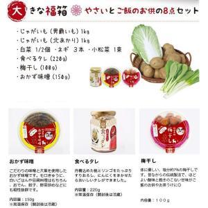 大きな福箱 農園で採れた新鮮野菜とご飯のお供のセット新鮮野菜5種類/食べるタレ/おかず味噌 送料無料 ふくしまプライド。体感キャンペーン(果物・野菜)|fukufukugenki|02
