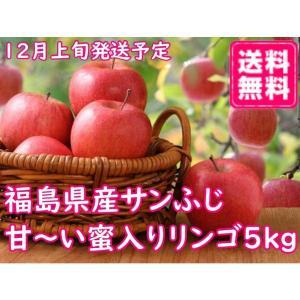 福尽漬 150g×5個セット 国産 無添加 農家のお母さん達の手作り福神漬け 漬物 阿部農縁|fukufukugenki