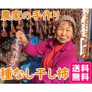 いかにんじん 120g×5個セット 福島 農家のお母さん達の手作りいかにんじん イカ人参 郷土料理 阿部農縁|fukufukugenki