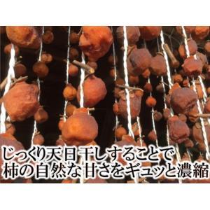 いかにんじん 120g×5個セット 福島 農家のお母さん達の手作りいかにんじん イカ人参 郷土料理 阿部農縁|fukufukugenki|02