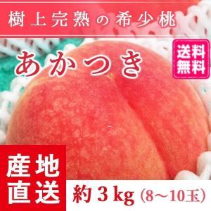 予約販売 福島県産 桃 もぎたて完熟 あかつき 約3kg 8〜10玉 阿部農縁 産地直送 もも モモ ふくしまプライド。体感キャンペーン(果物/野菜)|fukufukugenki