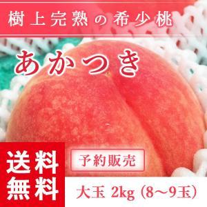予約販売 福島県産 桃 もぎたて完熟 あかつき 大玉 約2kg 8〜9玉 送料無料 阿部農縁 産地直送 もも モモ|fukufukugenki
