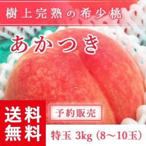 予約販売 福島県産 桃 もぎたて完熟 あかつき 特玉 約3kg 8〜10玉 送料無料 阿部農縁 産地直送 もも モモ|fukufukugenki