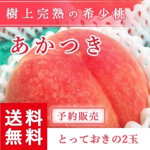 予約販売 福島県産 桃 もぎたて完熟 あかつき 贈答用・ギフトにも とっておきの2個 送料無料 阿部農縁 産地直送 もも モモ|fukufukugenki
