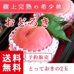 福島県産 桃 もぎたて完熟 おどろき 贈答用・ギフトにも とっておきの2個 送料無料 阿部農縁 産地直送 もも モモ|fukufukugenki