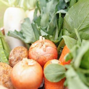 朝採り新鮮旬野菜を産地直送 うまいもんセット 野菜 手作り福尽漬 えごま入りおかず味噌|fukufukugenki|02