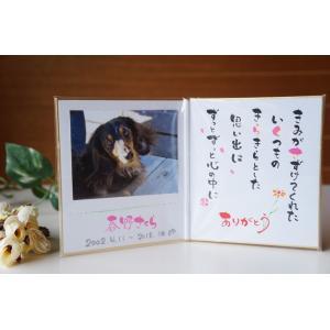 ●送料無料●「おもいで写真色紙」(お名前メッセージ入り写真立て)&ミニご供養セット|fukufukuyama|02