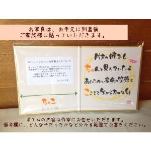 ●送料無料●「おもいで写真色紙」(お名前メッセージ入り写真立て)&ミニご供養セット|fukufukuyama|03