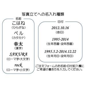 送料無料!猫専用仏具セット「ねこづくし」ピンク fukufukuyama 05