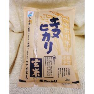 湖国近江滋賀県産の産地直送米キヌヒカリ2キロ玄米減農薬特別栽培米