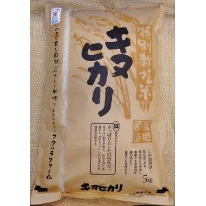 湖国近江滋賀県産の産地直送米キヌヒカリ5キロ白米減農薬特別栽培